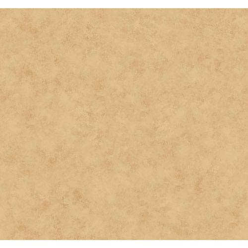 Antonina Vella Tan Kashmir Plaster Glaze Wallpaper: Sample Swatch Only