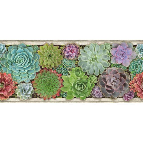 Border Portfolio II Container Garden Removable Wallpaper Border
