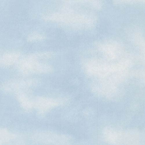 York Wallcoverings Brothers and Sisters Four Kids Clouds Wallpaper