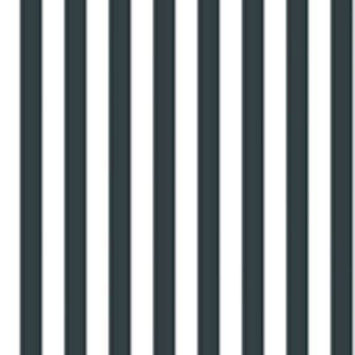 Brothers and Sisters Four 1.5 Inch Narrow Awning Stripe