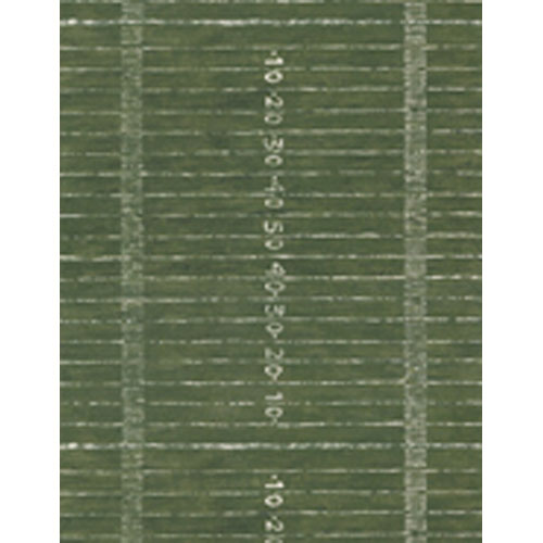 Brothers and Sisters Four Grassy Football Field with Yard Lines Wallpaper: Sample Swatch Only
