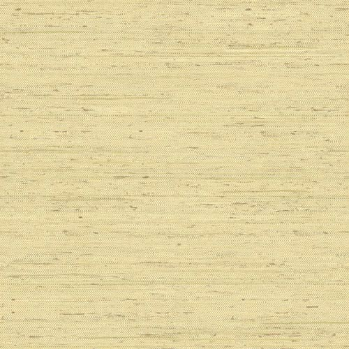 York Wallcoverings Inspired by Color Cream and Green Wallpaper
