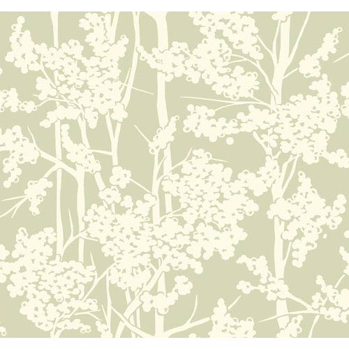 York Wallcoverings Candice Olson Modern Artisan Haven Wallpaper: Sample Swatch Only