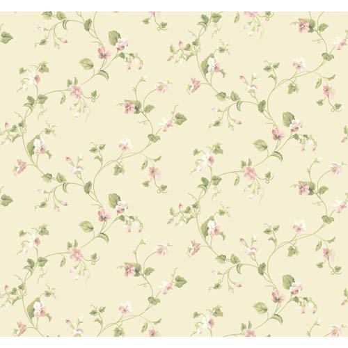 York Wallcoverings Waverly Cottage Cream, Peaches and Green Sweet Violets Trail Wallpaper: Sample Swatch Only