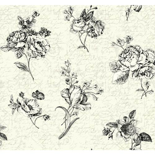York Wallcoverings Waverly Cottage Cream, Pearl, White and Black Picture Perfect Wallpaper: Sample Swatch Only