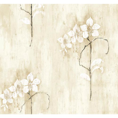 York Wallcoverings Inspired by Color Oyster Grey, Green, Taupe, White and Black Wallpaper: Sample Swatch Only