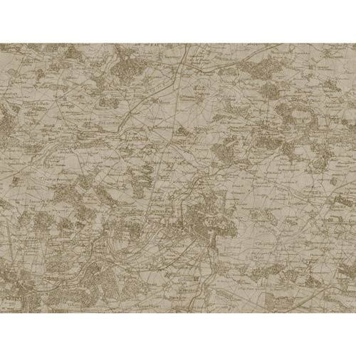 York Wallcoverings Passport Gold Metallic, Antique White And ...
