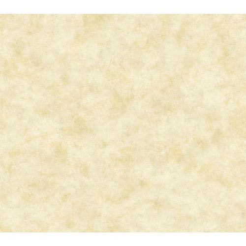 Handpainted III Beige and Tan Painterly Texture Wallpaper