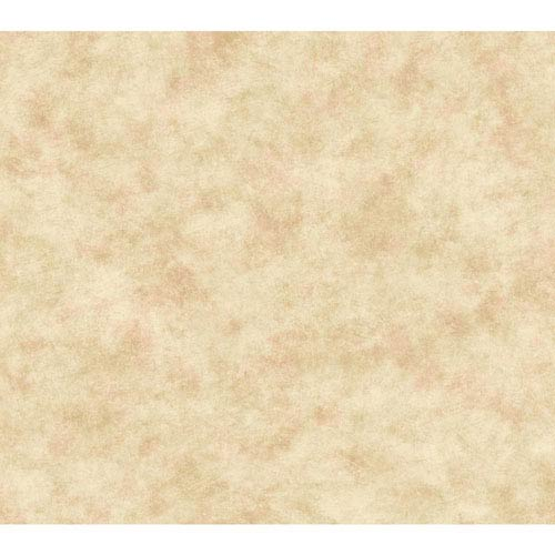 Handpainted III Beige and Pale Pink Painterly Texture Wallpaper: Sample Swatch Only