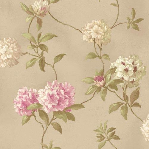 York Wallcoverings Handpainted III Soft Gold Rhodedendrum/Script Wallpaper