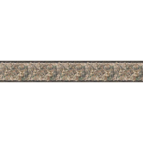 York Wallcoverings Inspired by Color Brown and Green Wallpaper: Sample Swatch Only
