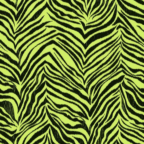 York Wallcoverings Cool Kids Pistachio and Licorice Ikat Zebra Wallpaper: Sample Swatch Only