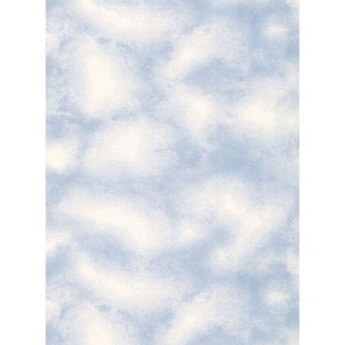 York Wallcoverings Lake Forest Lodge Cloud Wallpaper: Sample Swatch Only