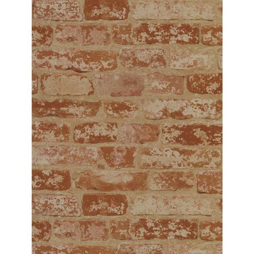York Wallcoverings Candice Olson Inspired Elements Oasis Wallpaper: Sample Swatch Only
