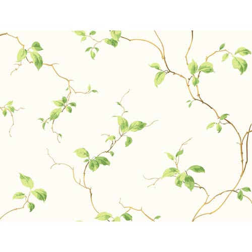 York Wallcoverings Inspired by Color Off White and Green Wallpaper: Sample Swatch Only
