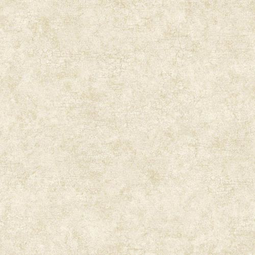 York Wallcoverings Nantucket White, Taupe and Soft Gold Sheen Texture with Crackle Wallpaper: Sample Swatch Only