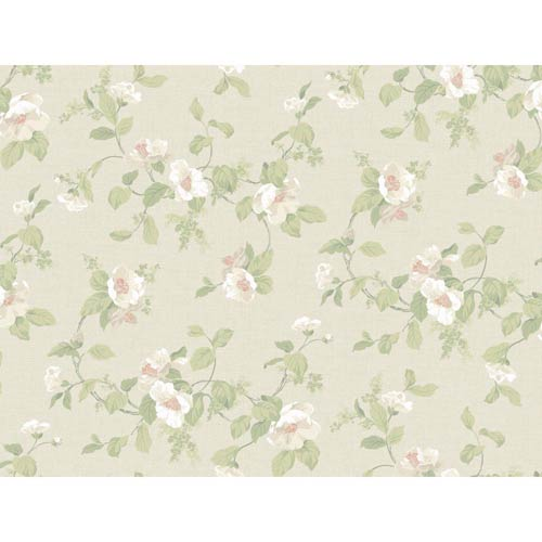 York Wallcoverings Hyde Park Dove Gray, Chalk White, Cream, Soft Coral and Mint Green Wallpaper: Sample Swatch Only