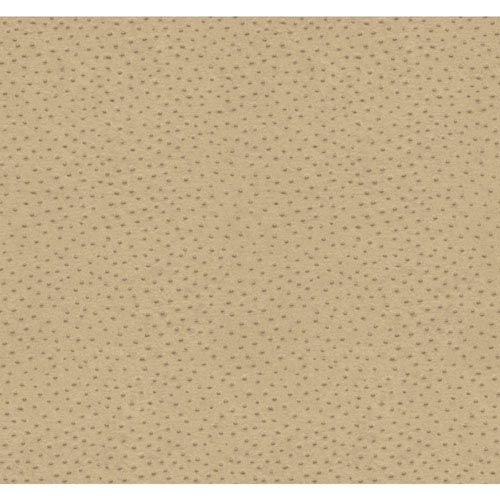 Natural Elements Beige and Brown Orstrich Wallpaper