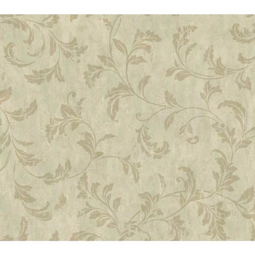 York Wallcoverings Weatherby Woods Green, Seafoam and Golden Brown Stucco Scroll Wallpaper: Sample Swatch Only