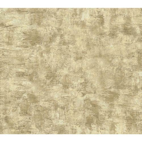 York Wallcoverings Texture Portfolio Ecru and Tan Organic Texture Wallpaper: Sample Swatch Only
