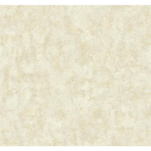 Texture Portfolio Eggshell and Ecru Overall Texture Wallpaper