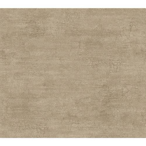 Texture Portfolio Taupe Rice Paper Wallpaper