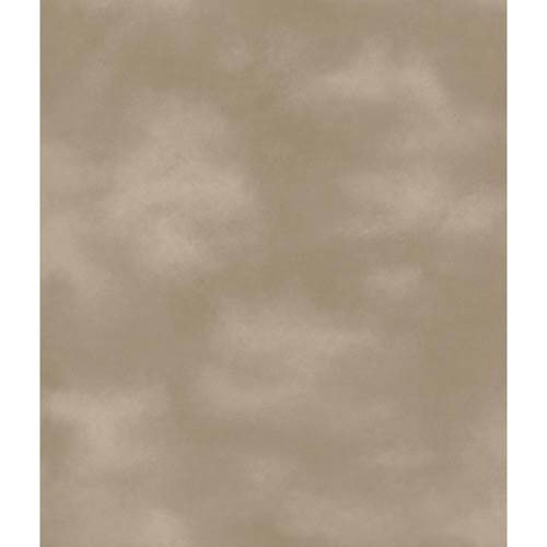 York Wallcoverings Boys Will be Boys Cool Taupe Wallpaper: Sample Swatch Only