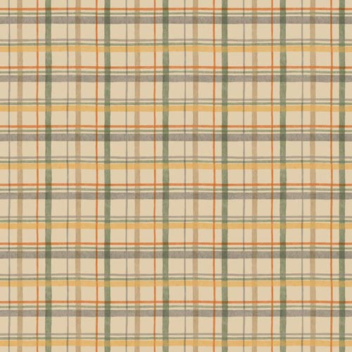 York Wallcoverings Boys Will Be Boys Multi-Colored Wallpaper: Sample Swatch Only
