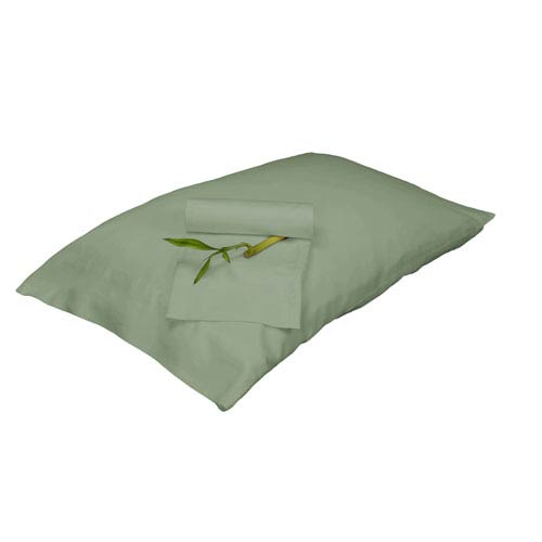 Sage Rayon from Bamboo Full/Standard Pillowcase Set