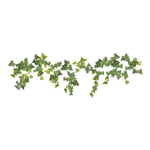 Ivy Wall Decals