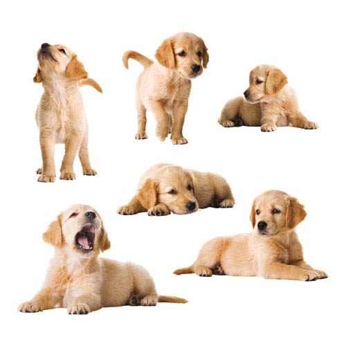 Puppies Wall Decals