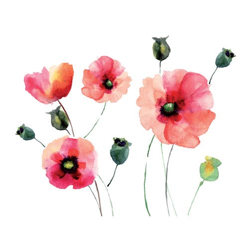 Watercolor Poppies Wall Decals
