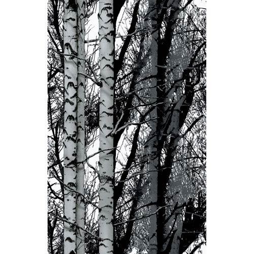 Birch Wood Adhesive Film, Set of Two