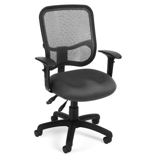 Modern Mesh Gray Ergonomic Task Chair with Arms