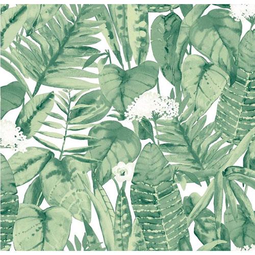 Tropical Jungle Green Removable Wallpaper