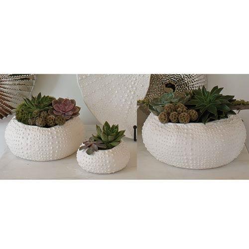 Ceramic Matte White Large Urchin Bowl