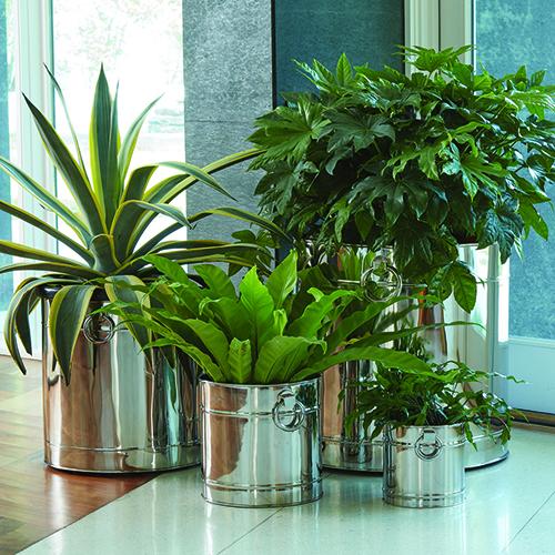 Lodhi Eight-Inch Planter
