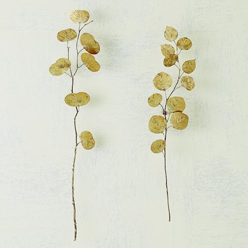 Studio A Small Antique Brass Eucalyptus