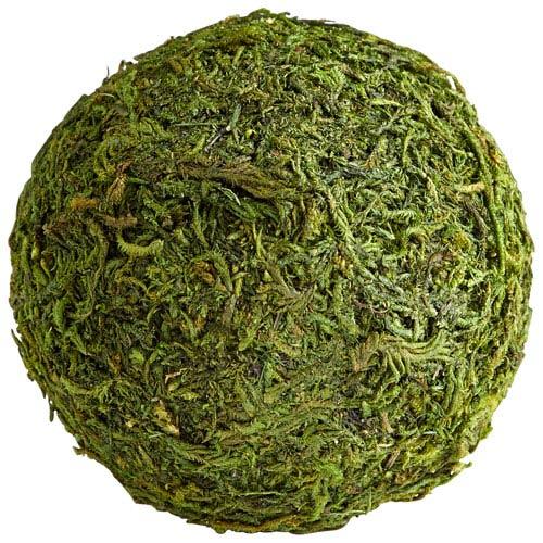 Bermuda Green Moss Small Filler