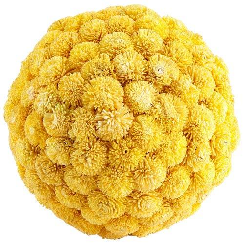Sia Yellow Medium Filler