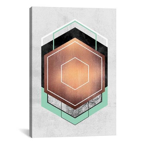 iCanvas Hexagon Abstract I by Elisabeth Fredriksson: 18 x 26-Inch Canvas Print