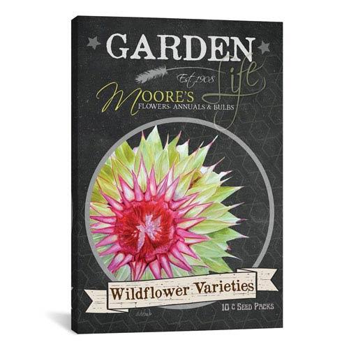 iCanvas Chalkboard Series, Wildflower Varieties by Jennifer Redstreake: 26 x 40-Inch Canvas Print