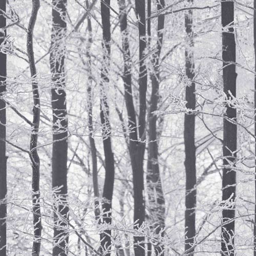 Frosted Wood Silver Wallpaper