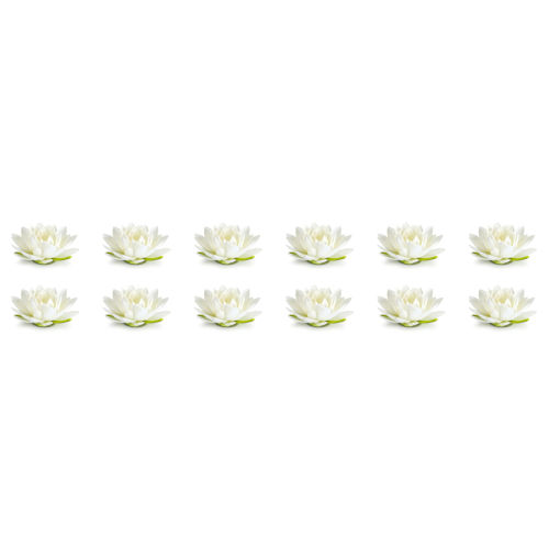 Cream and Green Eight-Inch Lotus Sprays, Set of 12
