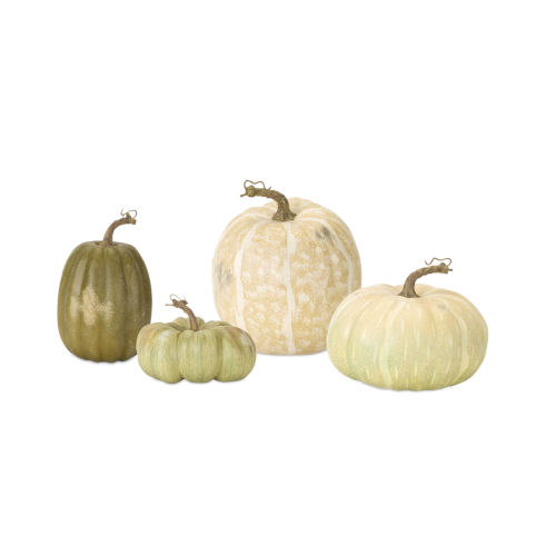 Green and White Pumpkin, Set of 4
