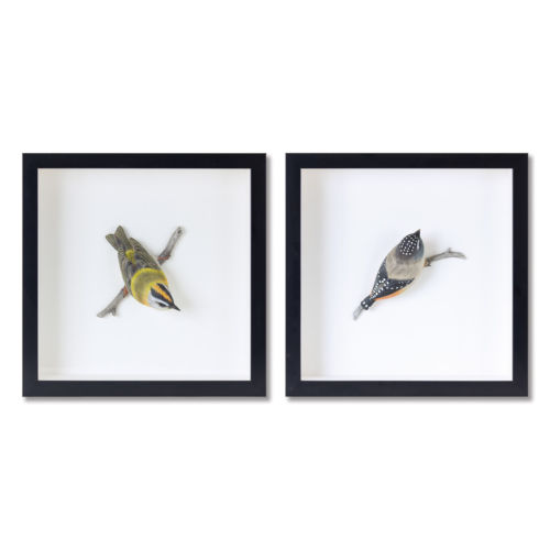 Black and White Bird Shadow Box, Set of 2