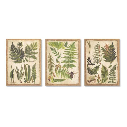 Fern Print Canvas, Set of Three