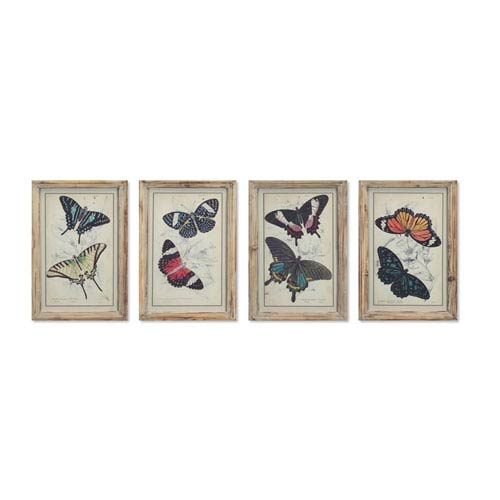 Framed Butterfly Print, Set of Four