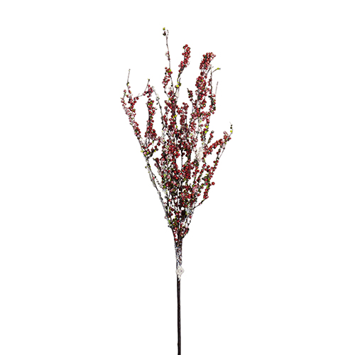 Berry Branch, Set of 12