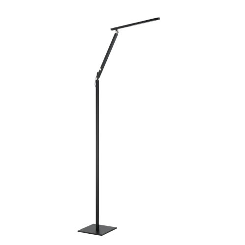 Pazz Integrated LED Adjustable Floor Lamp